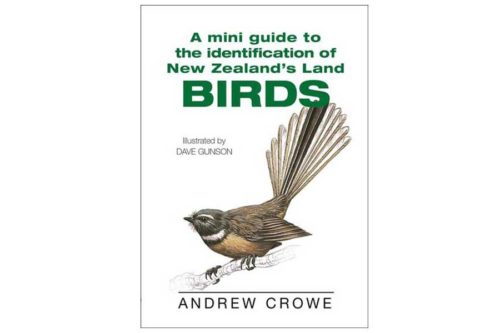 Mini Guide to the Identification of New Zealand Land Birds
