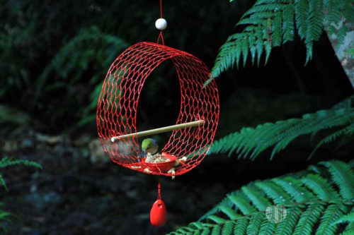 Perch Nectar Ring Tree Earring Bird Feeder