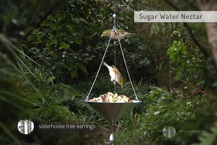 Sisterhouse Bird Recipe Cards